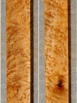 Birdseye Maple Neckwood  (BM-221)