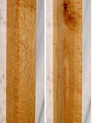 Birdseye Maple Neckwood Blank, 48mm  (BM-62)