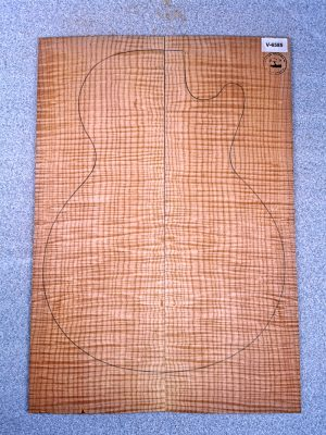 Curly Maple Guitar Top, 4mm  (V-6585)