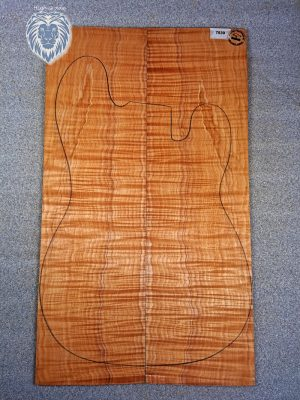 Prem. flamed Maple Guitar Top, 4,5mm  (V-7839)