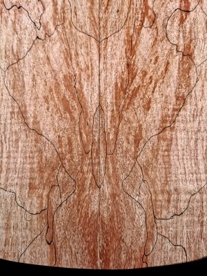Prem. spalted Maple Guitar Top, 7mm  (V-8092)