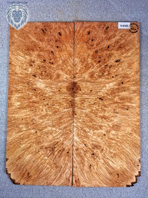 Prem. Maple Burl Guitar Top, 7,5mm  (V-8185)