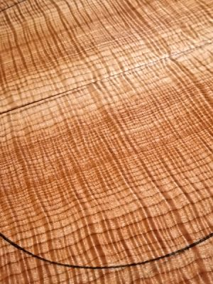 Prem. curly Maple Guitar Top, 6,5mm  (FL-596)