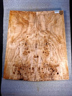 Poplar Burl Guitar Top, 24mm  (SPB-257)