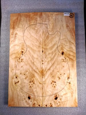 Poplar Burl Guitar Top, 24mm  (SPB-258)