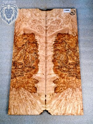 Prem. spalted burly Maple Guitar Top, 8mm  (V-8095)